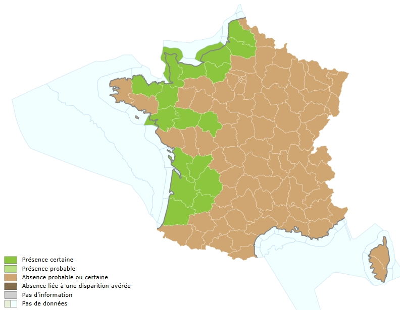 Répartition LPF